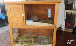 Selling my 2 story hutch and 1 female mini lop she is