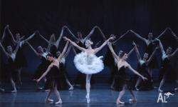 I have two tickets for Swan Lake with Russian National