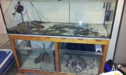 Have a 3 tank rack up for sale large tank on top and