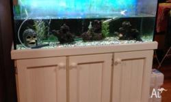 I have for sale a 4x2x2 tank for sale with everything