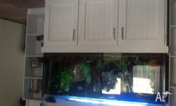 5x2x2 fish tank stand include only 6 month old selling