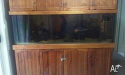 I have a 6 foot (6*2*2) fish tank for sale including