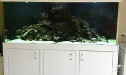 2000 X 800 X 620 tank, oversized sump filtration, two