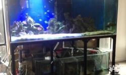 7.5ft marine tank ,12mm glass with 15mm base