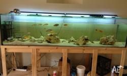 I have for sale an 8 x 2 x 2 fish tank bought from