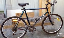 Apollo Mountain bike, 21 spd Shimano gears, needs a bit
