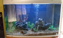 Up for sale is in good condition aquarium and cabinet.