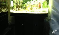 Resun Brand Fish Tank Full Setup In Excellent Condition