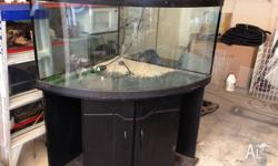 Second hand Black corner aquarium large front length of