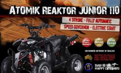 ATOMIK,REAKTOR JUNIOR,2010, ATV, 110cc, AUTOMATIC, We
