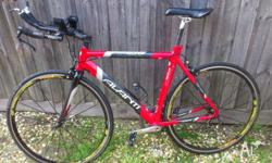 Giant Trinity 54cm 2007 Triathlon/Time Trial Bike for Sale