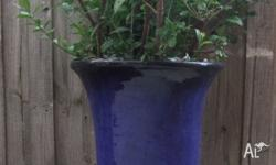 Blue glazed ceramic pot 81cm tall & 51cm diameter