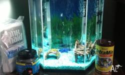 Blue Planet Hexi 57L Comes with air pump, heater,