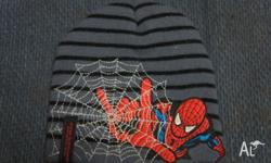 Boy's Spider-man Beanie In fantastic used condition No