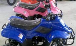 Brand New 110cc Automatic Kids Quad Bike, Fully