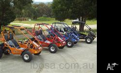 Twister 150 Off Road Buggy Page Item Description IN