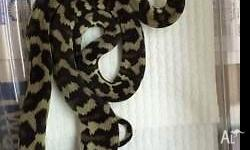 Juvenile Cape York Carpet pythons for sale Feeding and