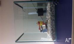 Cubed Glass Fish Tank - 30 cm Including Pebbles and