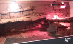 hello for sale is my custom built reptile enclosure,