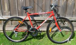Cyclops Men's Bike in excellent condition. Frame is