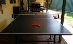 DRAGONFLY 3000 Series Top Class Folding Table Tennis