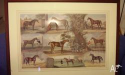 This beautiful large picture is of the Racehorses that