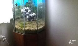 Fish tank on stand 8 sides. 134cm high, 52cm wide, 52cm