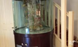 Beautiful fish tank, round view, still very new, in