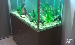 4ft display aquarium 360 litres approx. With 10mm glass
