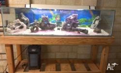 Large fish tank and stand. Pump, gravel and ornaments,