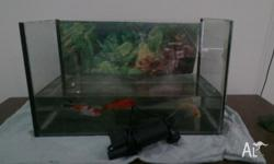 Approx 30 L tank. no leaks comes with 3 goldfish and 2