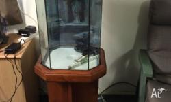 Nice fishtank with all accessories heater, large
