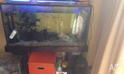 Large fishtank & stand, including good quality canister