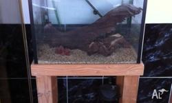 Fish tank comes with cabinet, Eheim filter and