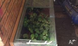Various fish/ mouse/ reptile tanks for sale. Make me an