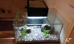 For sale is a year old Fluval Edge 23L tank. Comes with
