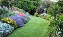 If you are after a Garden Clean Up / Your Lawns Mowed /