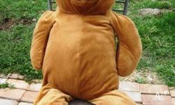 Giant Brown Teddy Bear - 80cms tall! Very Clean. Near