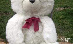 Giant White Teddy Bear 60cms tall! Very Clean. Near