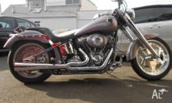 Harley custom soft tail road king dyna , 95 cubic inch