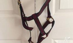 Cob sized head halter Some rust but good condition