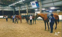 Dalson Park is Brisbanes leading Equestrian Centre.