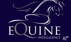 Equine Intelligence listens to your horse and trains