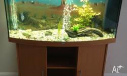 Up for sale is a Juwel Vision 260 tank and stand. Comes
