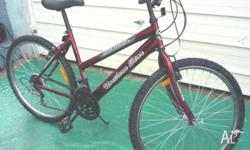 Northern Star 15 speed Ladies Bicycle. Suits small to