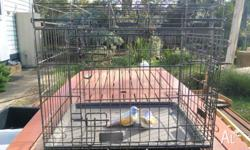 Large metal carry cage. Dimensions: Height: 520 Width: