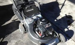 Briggs & Stratton catch & mulch lawnmower in excellent