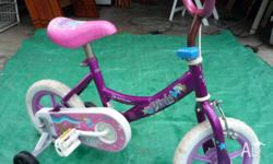 Dixie toddler bike with training wheels and rubber