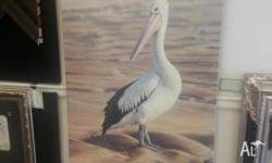 pelican . limited edition giglee canvas print by