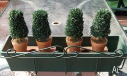 Green with 4 artificial plants - great for a patio area